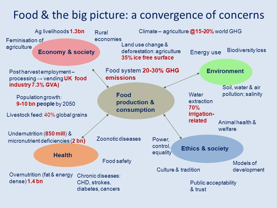 Food production & consumption Environment Ethics & society Health Economy & society Climate – agriculture @15-20% world GHG Biodiversity loss Water ex
