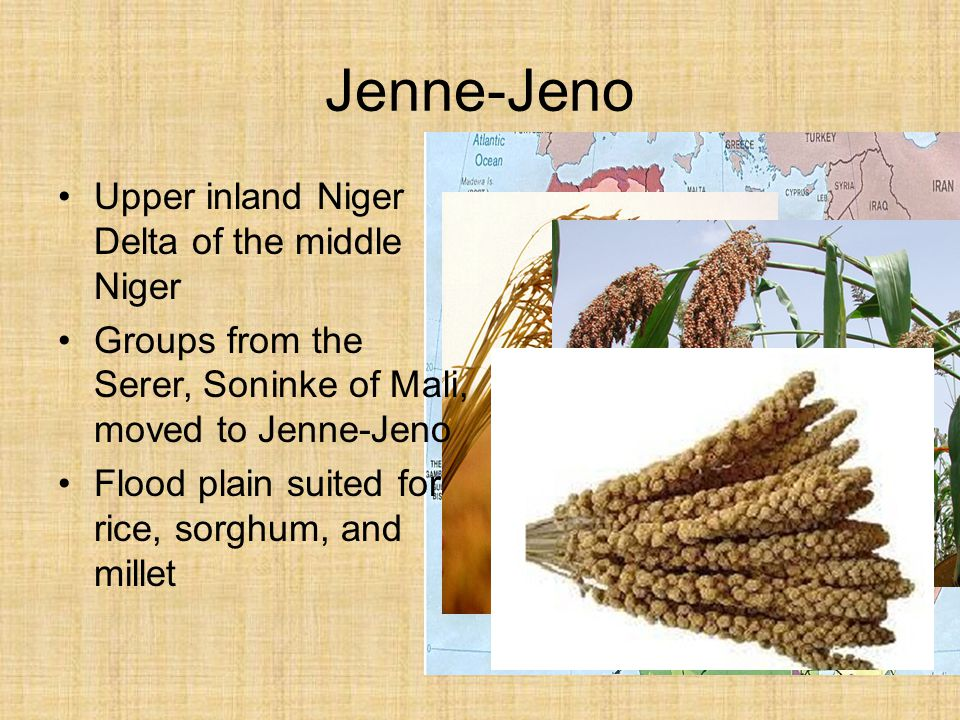 Jenne-Jeno Upper inland Niger Delta of the middle Niger Groups from the Serer, Soninke of Mali, moved to Jenne-Jeno Flood plain suited for rice, sorgh