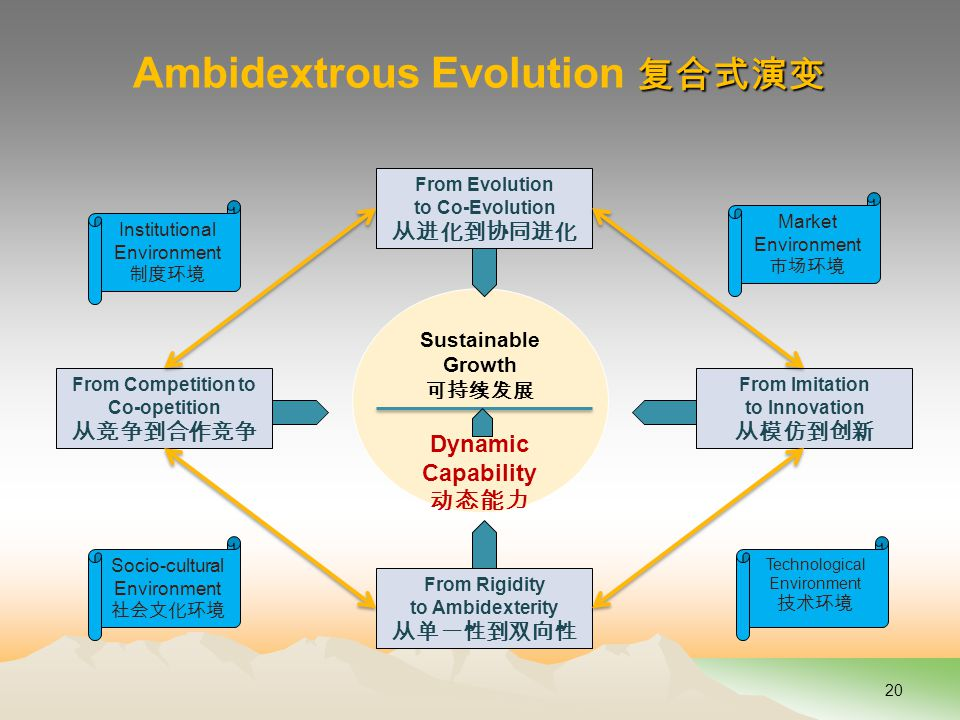 复合式演变 Ambidextrous Evolution 复合式演变 20 Sustainable Growth 可持续发展 Dynamic Capability 动态能力 From Evolution to Co-Evolution 从进化到协同进化 From Rigidity to Ambidexterity 从单一性到双向性 From Competition to Co-opetition 从竞争到合作竞争 From Imitation to Innovation 从模仿到创新 Institutional Environment 制度环境 Socio-cultural Environment 社会文化环境 Market Environment 市场环境 Technological Environment 技术环境