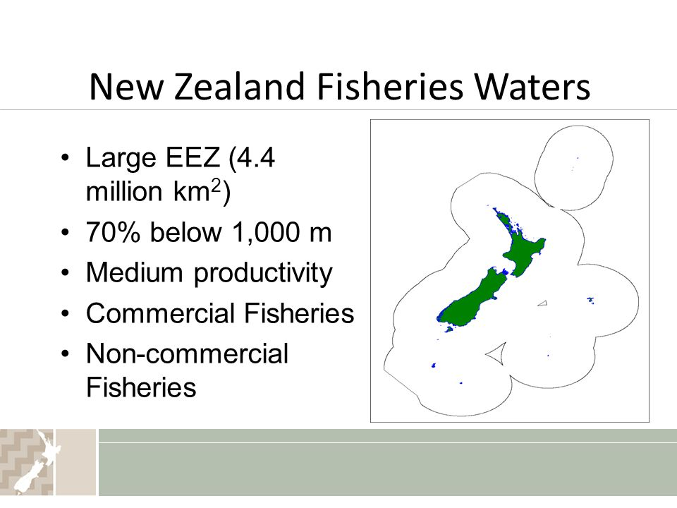 New Zealand Fisheries Waters Large EEZ (4.4 million km 2 ) 70% below 1,000 m Medium productivity Commercial Fisheries Non-commercial Fisheries