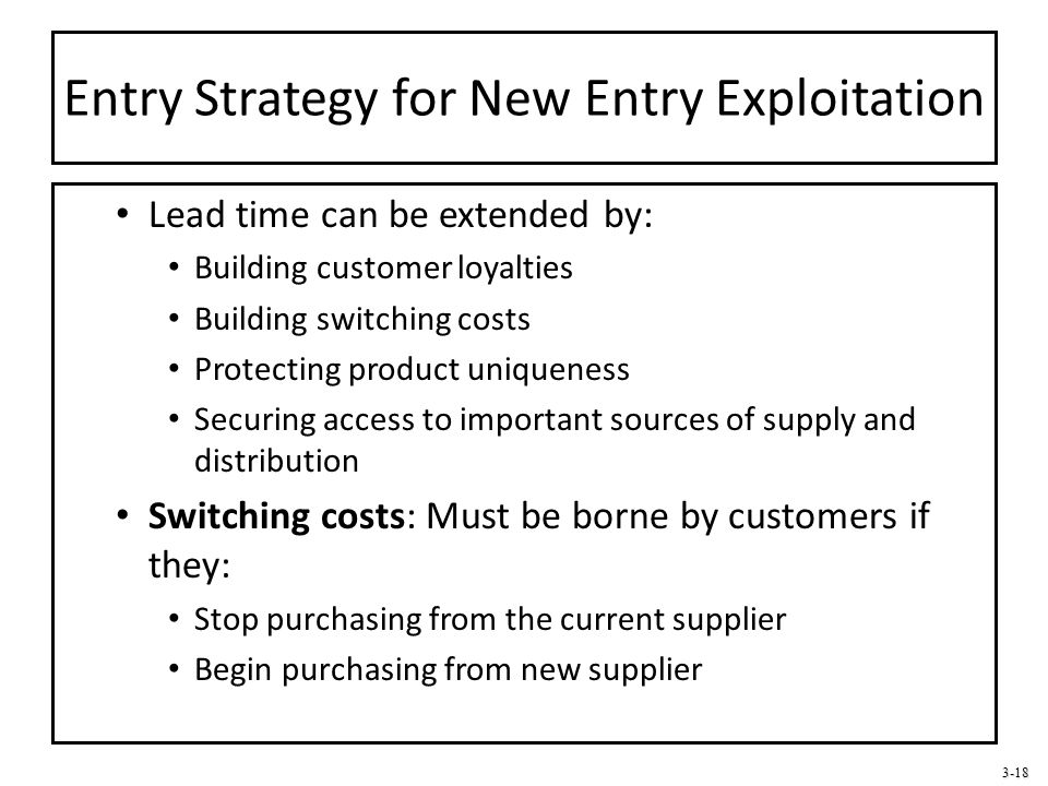 3-18 Entry Strategy for New Entry Exploitation Lead time can be extended by: Building customer loyalties Building switching costs Protecting product u
