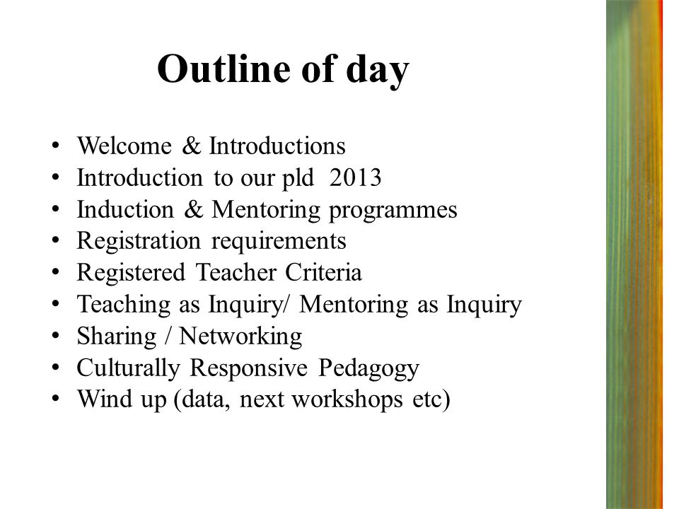 Outline of day Welcome & Introductions Introduction to our pld 2013 Induction & Mentoring programmes Registration requirements Registered Teacher Criteria Teaching as Inquiry/ Mentoring as Inquiry Sharing / Networking Culturally Responsive Pedagogy Wind up (data, next workshops etc)