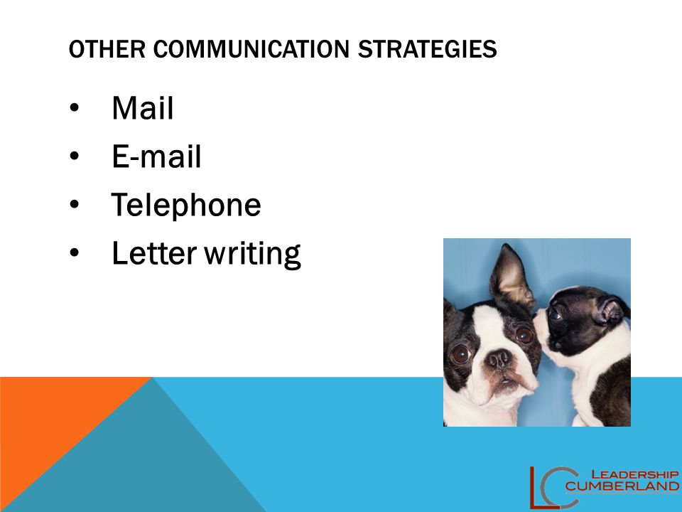 OTHER COMMUNICATION STRATEGIES Mail E-mail Telephone Letter writing