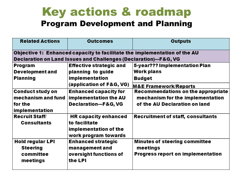 Key actions & roadmap Program Development and Planning Related ActionsOutcomesOutputs Objective 1: Enhanced capacity to facilitate the implementation of the AU Declaration on Land Issues and Challenges (Declaration)---F&G, VG Program Development and Planning Effective strategic and planning to guide implementation (application of F&G, VG) 5-year .