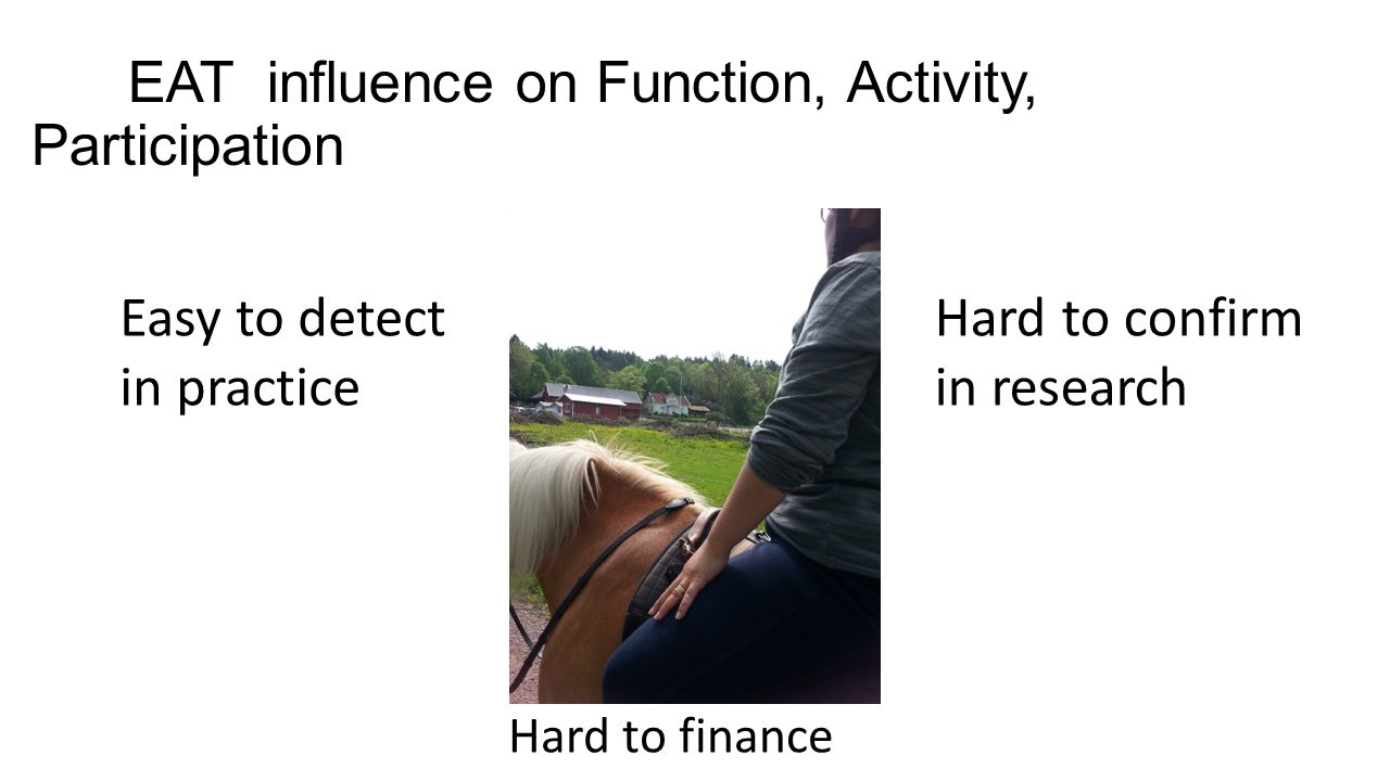 EAT influence on Function, Activity, Participation Easy to detect in practice Hard to confirm in research Hard to finance