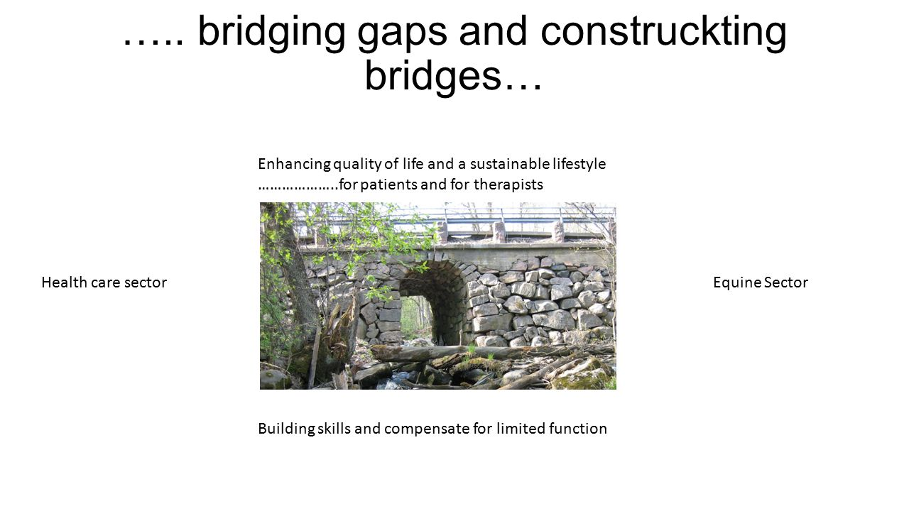 ….. bridging gaps and construckting bridges… Health care sectorEquine Sector Building skills and compensate for limited function Enhancing quality of