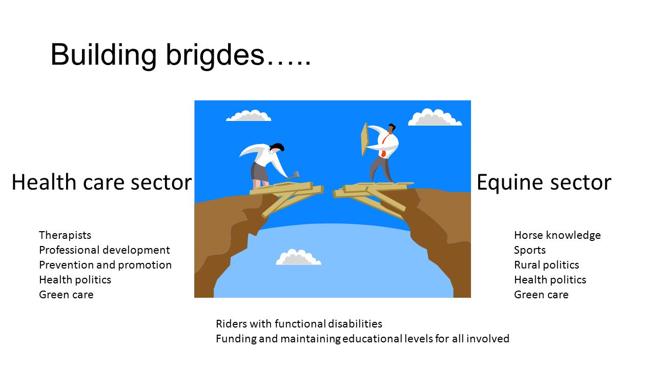 Building brigdes….. Health care sectorEquine sector Riders with functional disabilities Funding and maintaining educational levels for all involved Th