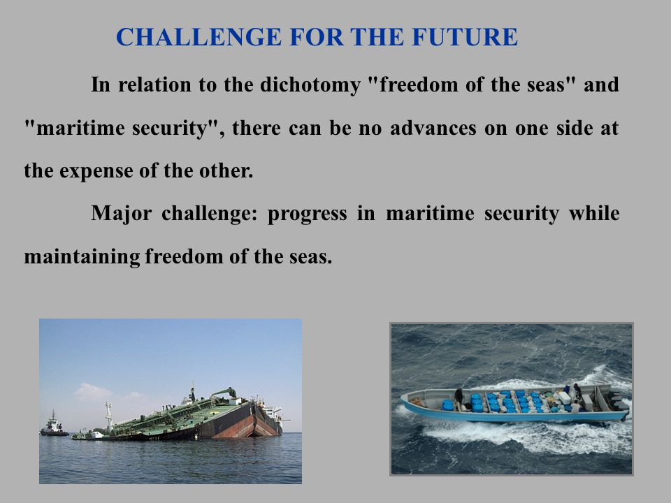 In relation to the dichotomy freedom of the seas and maritime security , there can be no advances on one side at the expense of the other.