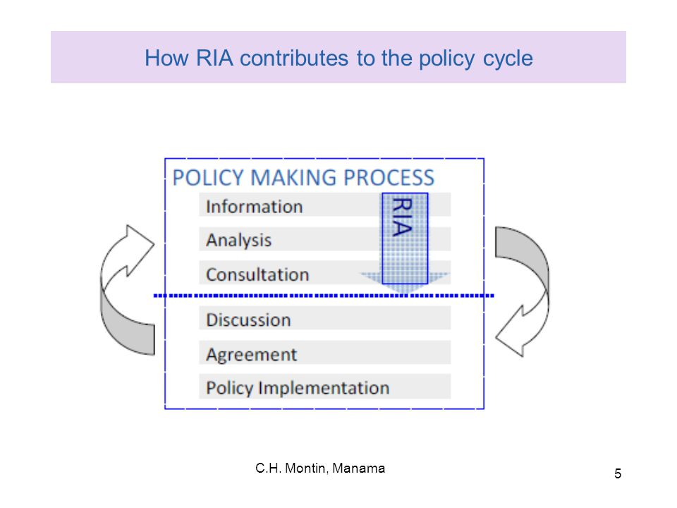 5 How RIA contributes to the policy cycle