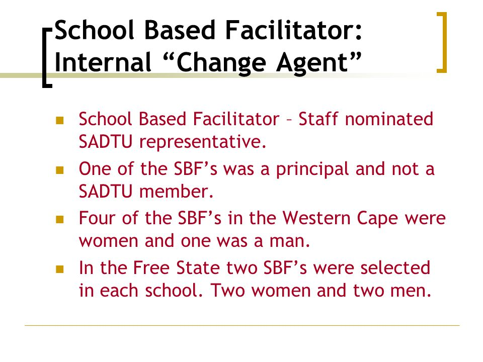School Based Facilitator: Internal Change Agent School Based Facilitator – Staff nominated SADTU representative.
