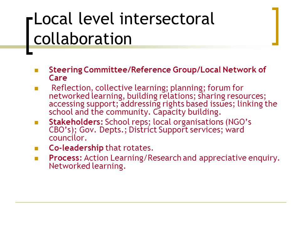 Local level intersectoral collaboration Steering Committee/Reference Group/Local Network of Care Reflection, collective learning; planning; forum for