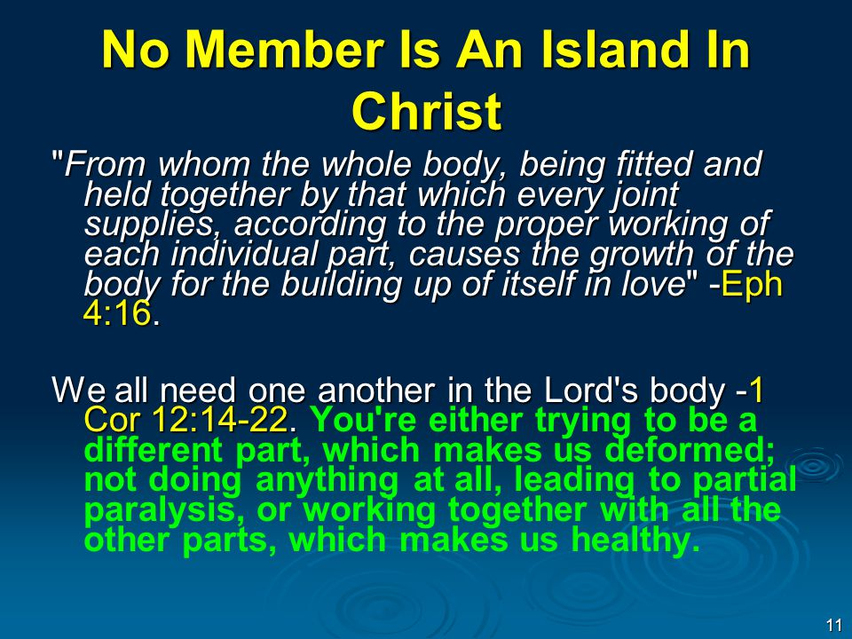 No Member Is An Island In Christ From whom the whole body, being fitted and held together by that which every joint supplies, according to the proper working of each individual part, causes the growth of the body for the building up of itself in love -Eph 4:16.