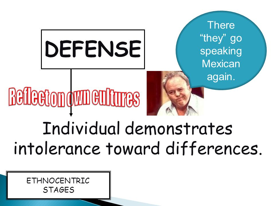 DENIAL Individual does not perceive cultural differences, or avoids them.