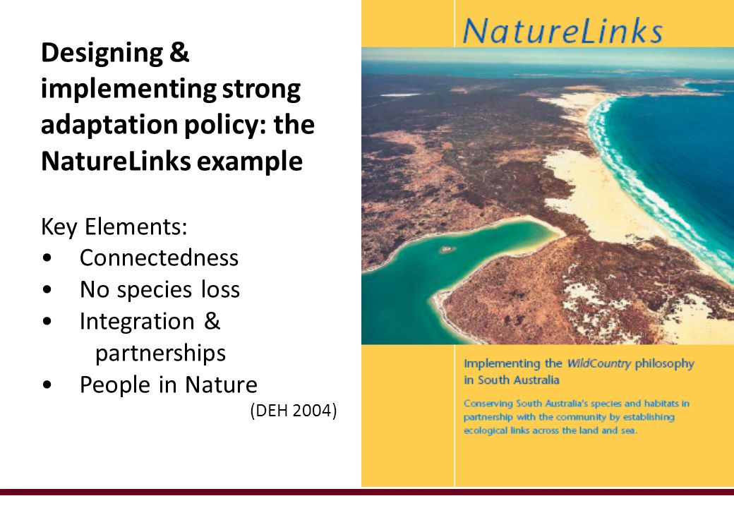 Designing & implementing strong adaptation policy: the NatureLinks example Key Elements: Connectedness No species loss Integration & partnerships People in Nature (DEH 2004)