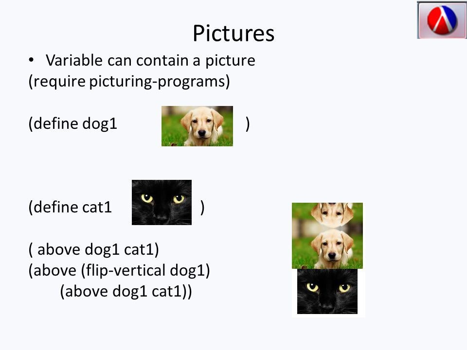 Pictures Variable can contain a picture (require picturing-programs) (define dog1 ) (define cat1 ) ( above dog1 cat1) (above (flip-vertical dog1) (above dog1 cat1))