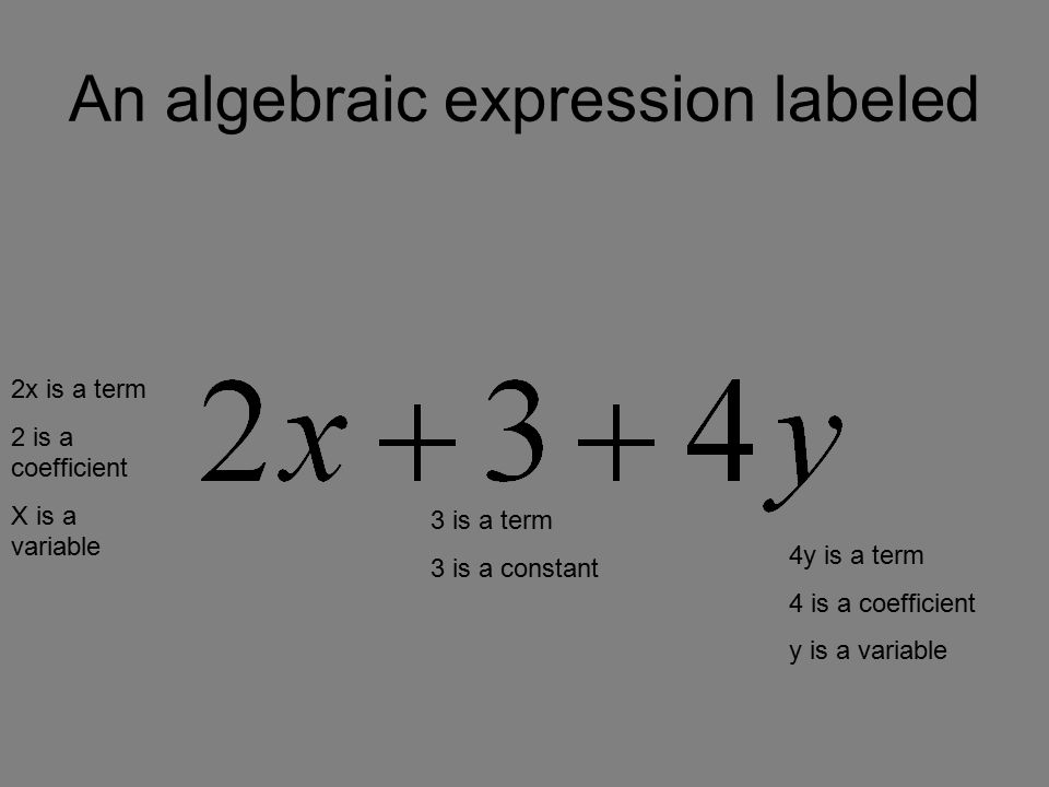An algebraic expression labeled 2x is a term 2 is a coefficient X is a variable 3 is a term 3 is a constant 4y is a term 4 is a coefficient y is a variable