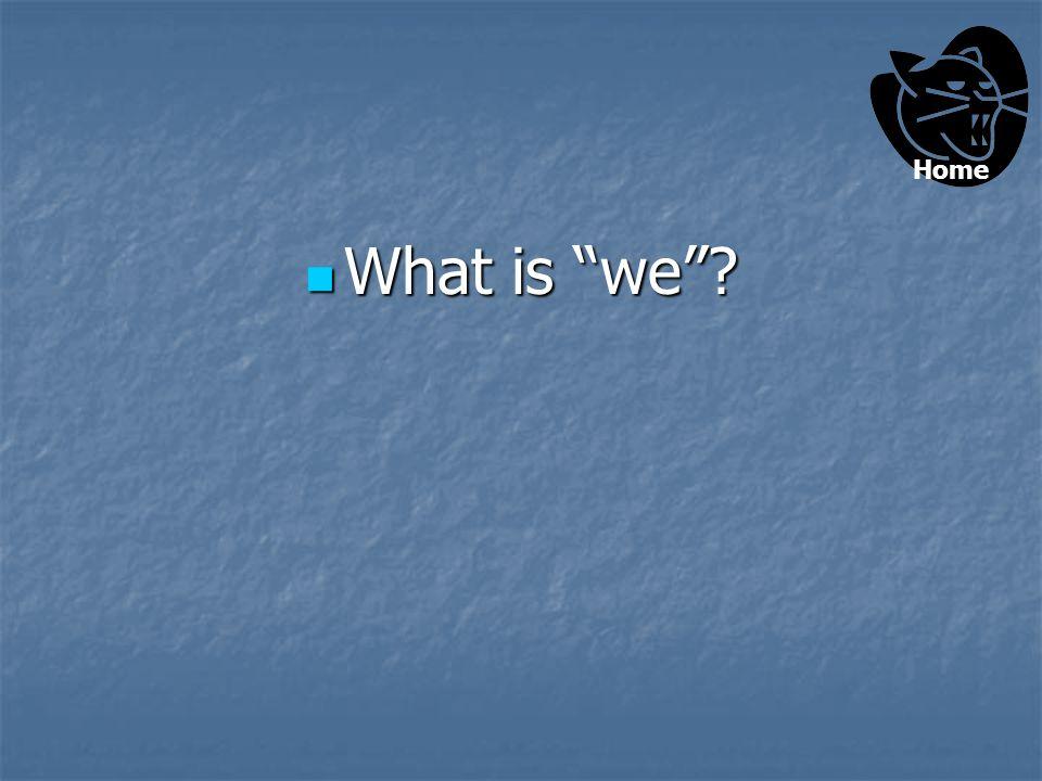 The subject pronoun in the following sentence: The subject pronoun in the following sentence: We saw photos of a tsunami.