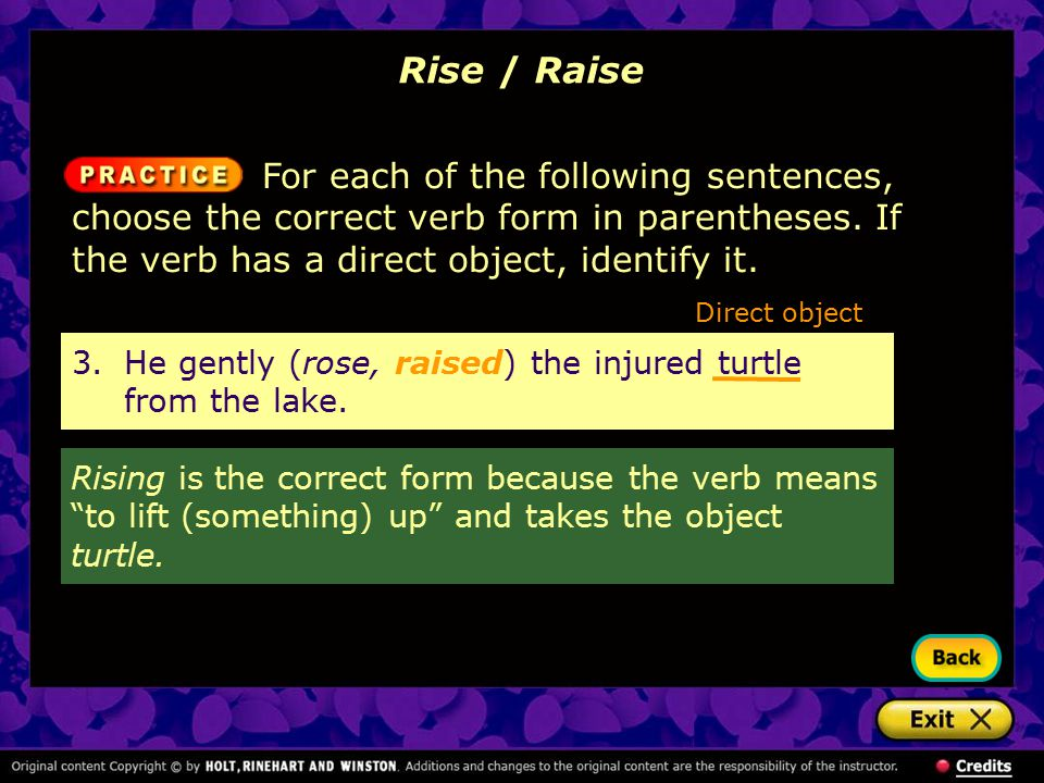 Rise / Raise For each of the following sentences, choose the correct verb form in parentheses. If the verb has a direct object, identify it. 3.He gent