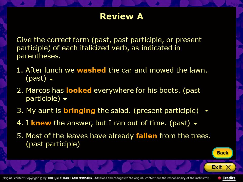 2.Marcos has looked everywhere for his boots. (past participle) 3.My aunt is bringing the salad. (present participle) 1.After lunch we washed the car