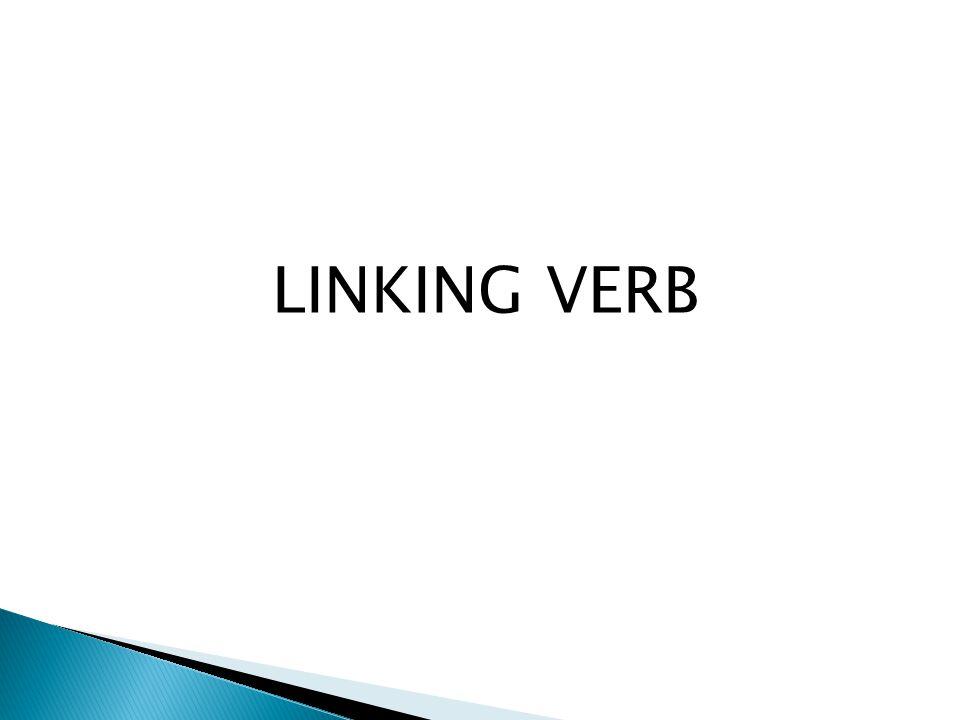 LINKING VERB