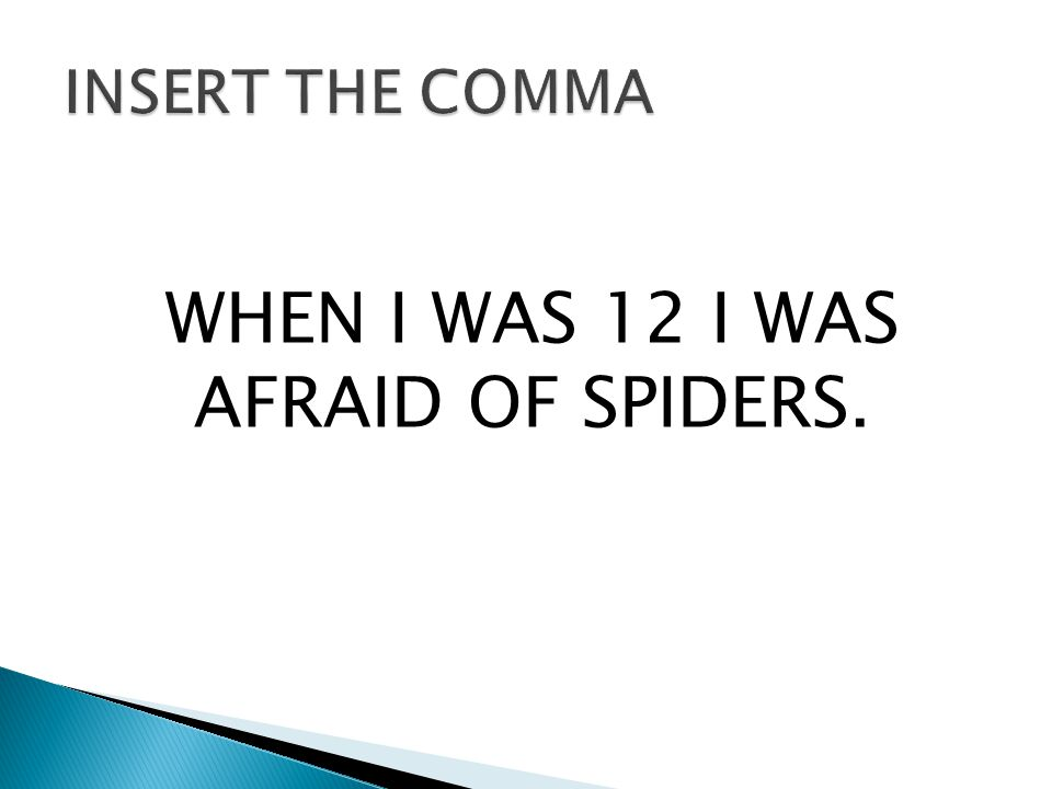 WHEN I WAS 12 I WAS AFRAID OF SPIDERS.