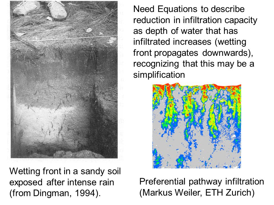 Wetting front in a sandy soil exposed after intense rain (from Dingman, 1994).