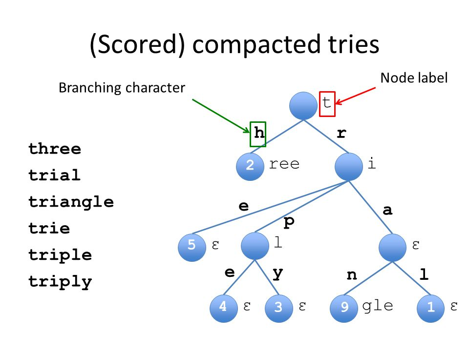 t iree εε l εεεgle hr e p a l n Node label Branching character (Scored) compacted tries ye three2 trial1 triangle9 trie5 triple4 triply3 2 1 4 3 5 9