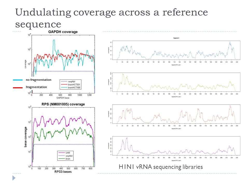 Undulating coverage across a reference sequence no fragmentation fragmentation H1N1 vRNA sequencing libraries