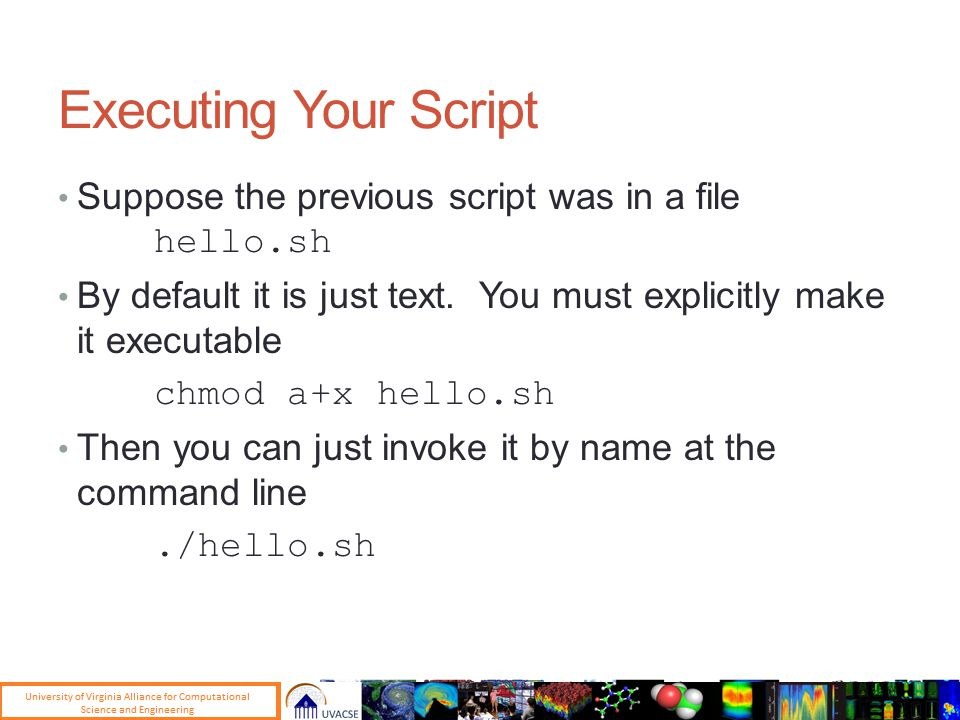 Executing Your Script Suppose the previous script was in a file hello.sh By default it is just text.