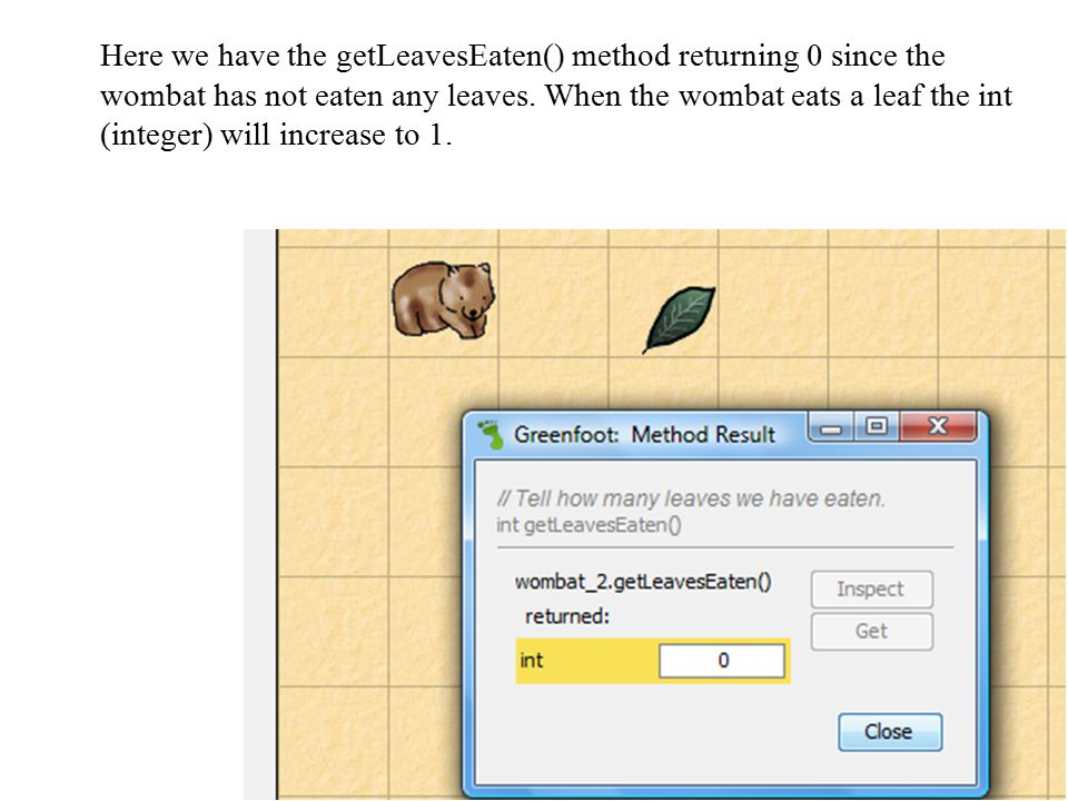 Here we have the getLeavesEaten() method returning 0 since the wombat has not eaten any leaves. When the wombat eats a leaf the int (integer) will inc