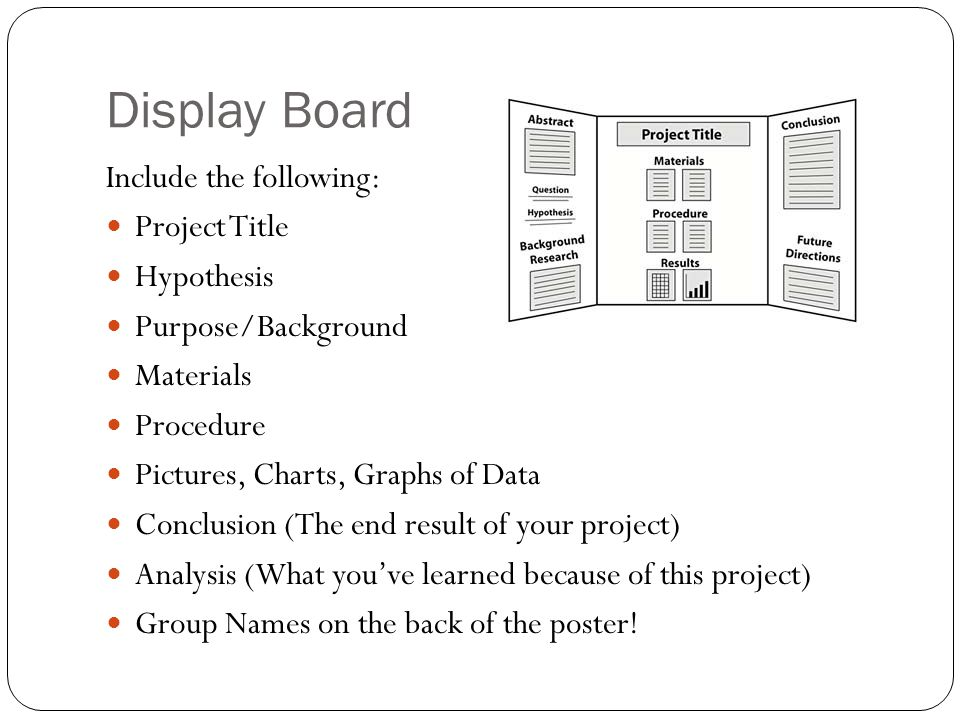 Display Board Include the following: Project Title Hypothesis Purpose/Background Materials Procedure Pictures, Charts, Graphs of Data Conclusion (The