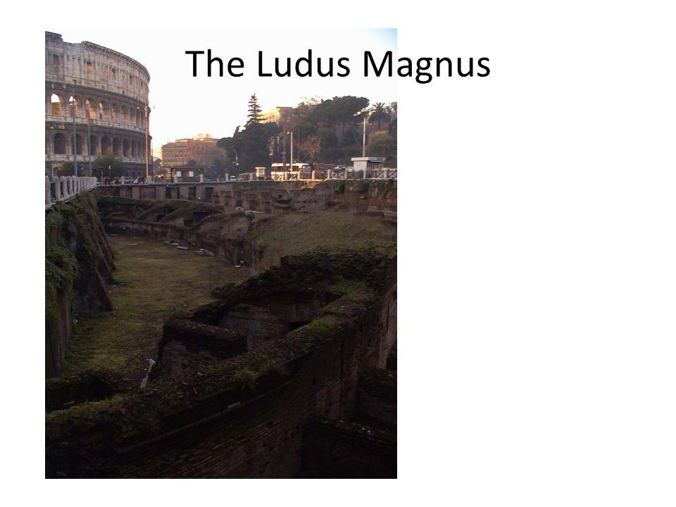The Ludus Magnus