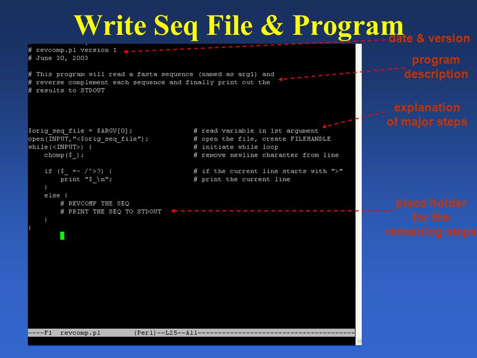 date & version program description explanation of major steps place holder for the remaining steps Write Seq File & Program