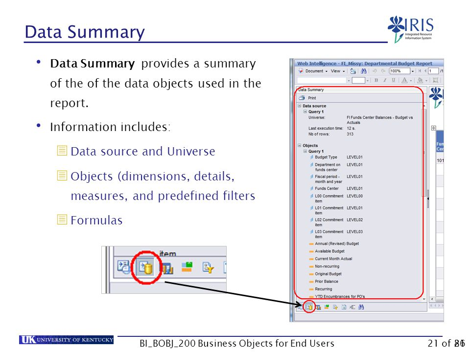 21 Data Summary Data Summary provides a summary of the of the data objects used in the report.