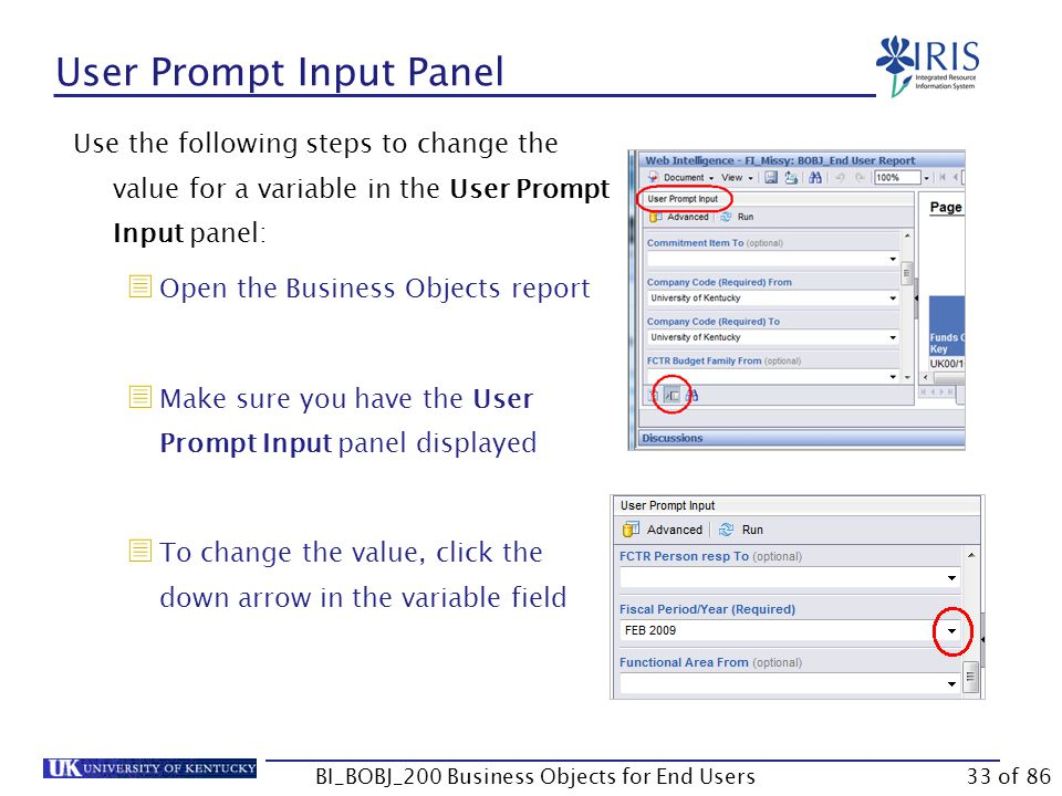 User Prompt Input Panel Use the following steps to change the value for a variable in the User Prompt Input panel:  Open the Business Objects report  Make sure you have the User Prompt Input panel displayed  To change the value, click the down arrow in the variable field BI_BOBJ_200 Business Objects for End Users33 of 86
