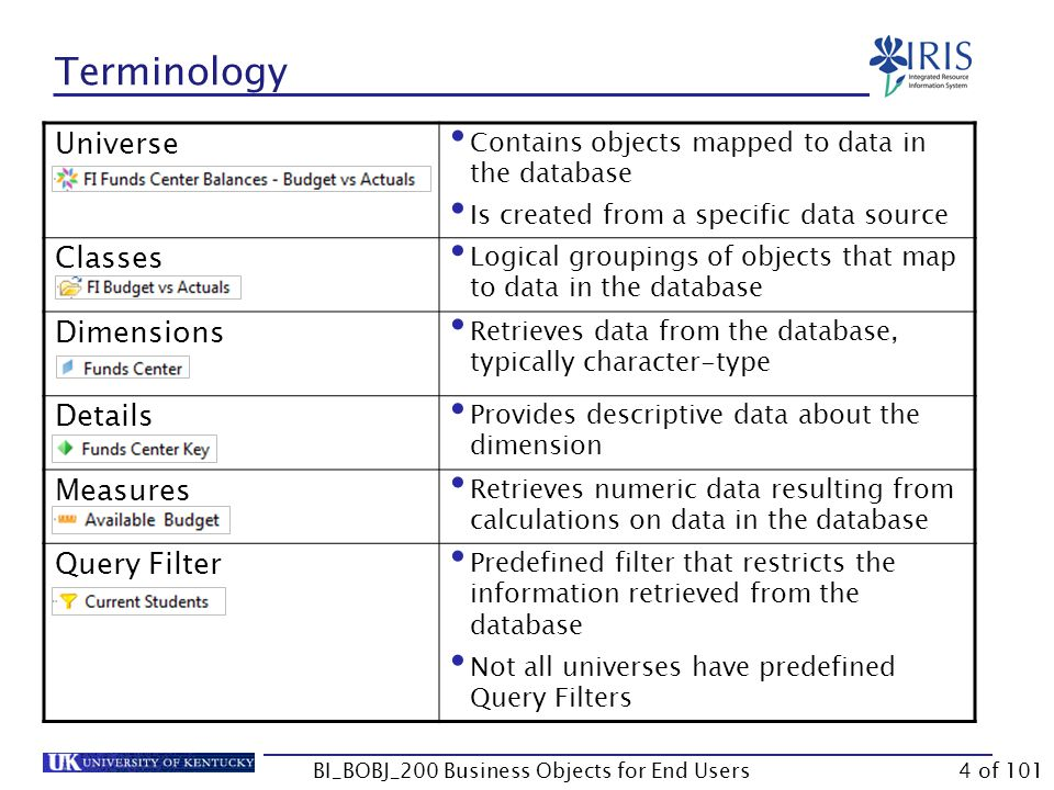 Terminology Universe Contains objects mapped to data in the database Is created from a specific data source Classes Logical groupings of objects that map to data in the database Dimensions Retrieves data from the database, typically character-type Details Provides descriptive data about the dimension Measures Retrieves numeric data resulting from calculations on data in the database Query Filter Predefined filter that restricts the information retrieved from the database Not all universes have predefined Query Filters BI_BOBJ_200 Business Objects for End Users4 of 101