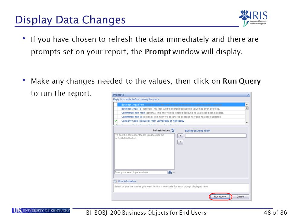 Display Data Changes If you have chosen to refresh the data immediately and there are prompts set on your report, the Prompt window will display.