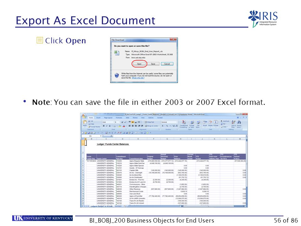 Export As Excel Document  Click Open Note: You can save the file in either 2003 or 2007 Excel format.