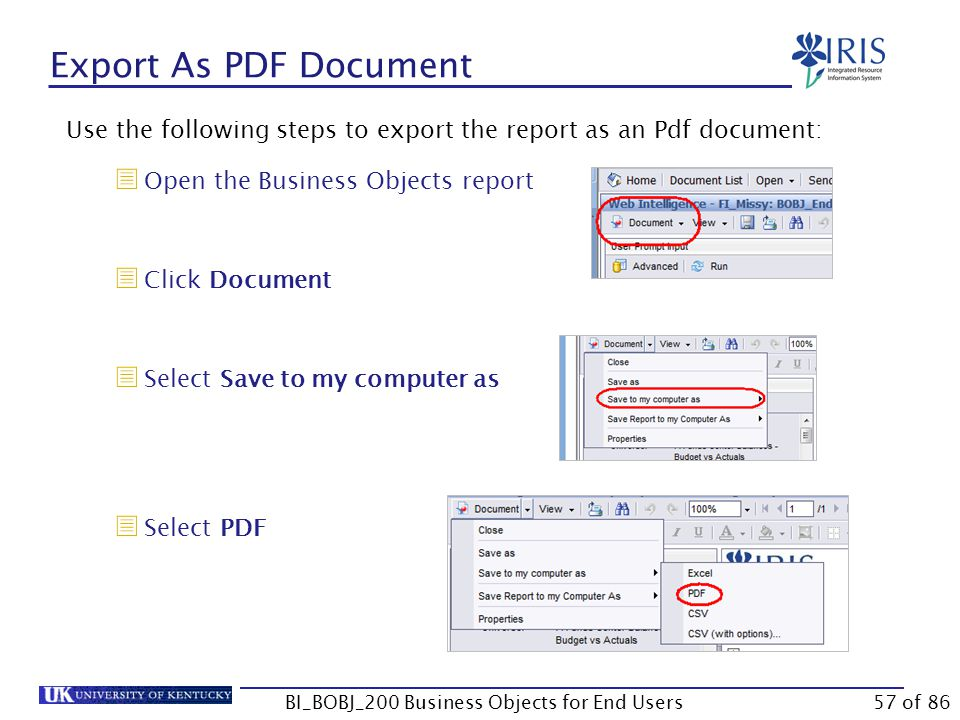 Export As PDF Document Use the following steps to export the report as an Pdf document:  Open the Business Objects report  Click Document  Select Save to my computer as  Select PDF BI_BOBJ_200 Business Objects for End Users57 of 86