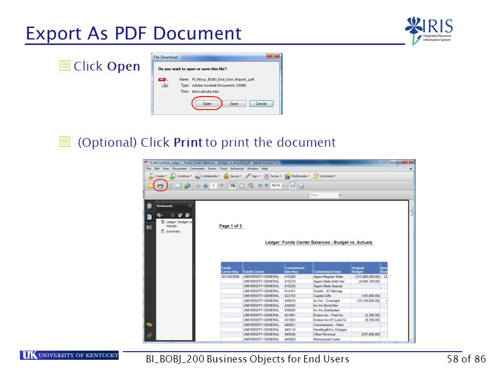 Export As PDF Document  Click Open  (Optional) Click Print to print the document BI_BOBJ_200 Business Objects for End Users58 of 86