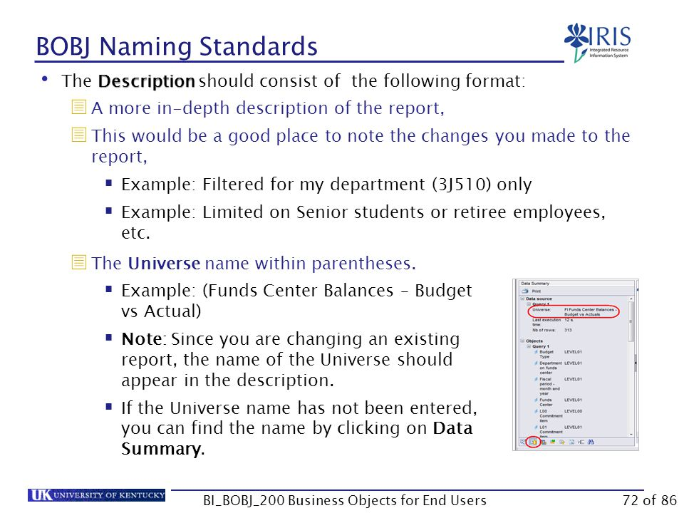 BOBJ Naming Standards BI_BOBJ_200 Business Objects for End Users Description The Description should consist of the following format:  A more in-depth description of the report,  This would be a good place to note the changes you made to the report,  Example: Filtered for my department (3J510) only  Example: Limited on Senior students or retiree employees, etc.