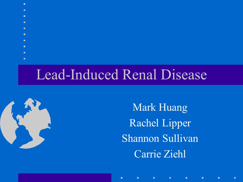 Lead-Induced Renal Disease Mark Huang Rachel Lipper Shannon Sullivan Carrie Ziehl