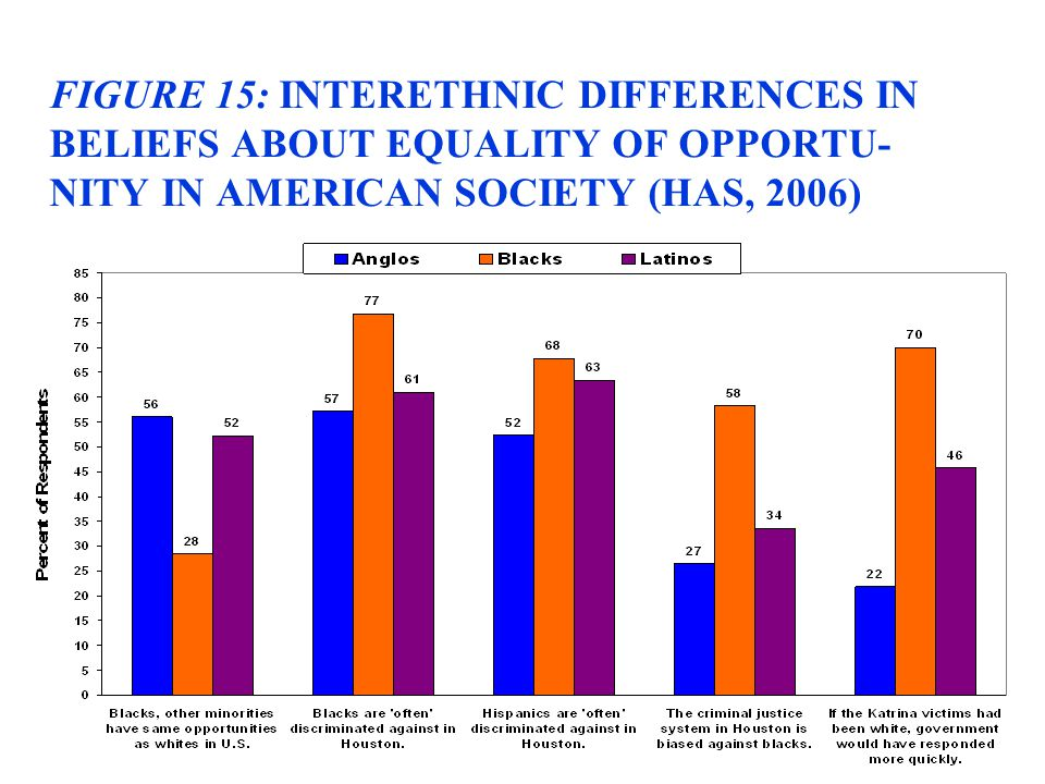 FIGURE 15: INTERETHNIC DIFFERENCES IN BELIEFS ABOUT EQUALITY OF OPPORTU- NITY IN AMERICAN SOCIETY (HAS, 2006)