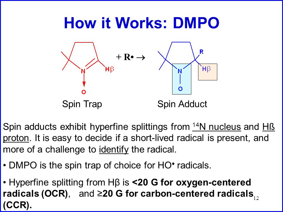 12 How it Works: DMPO + R  DMPO is the spin trap of choice for HO  radicals.