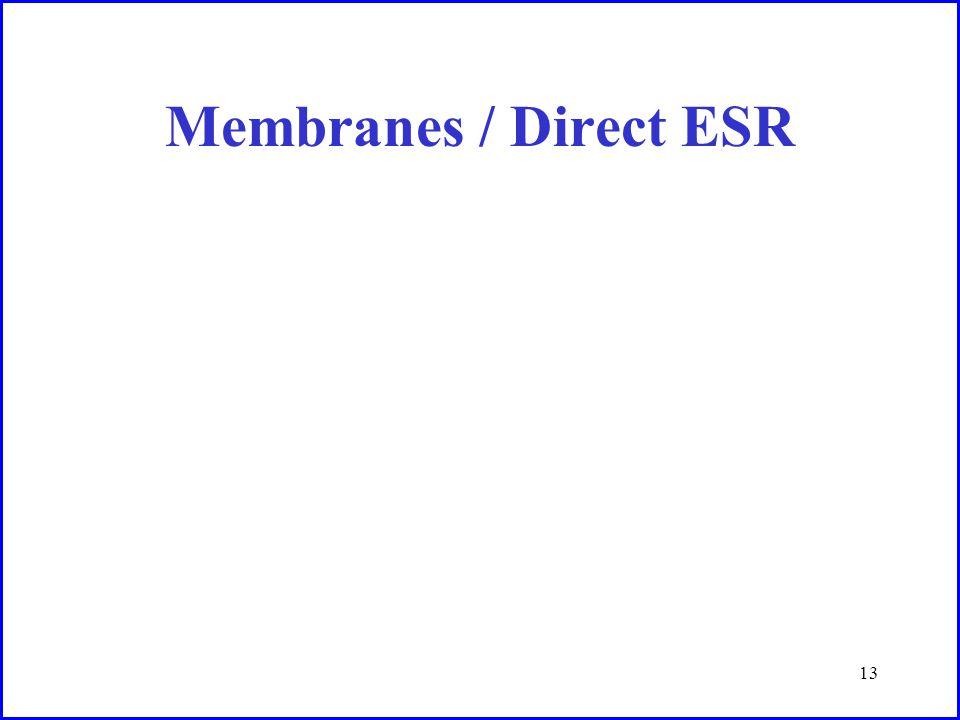 13 Membranes / Direct ESR