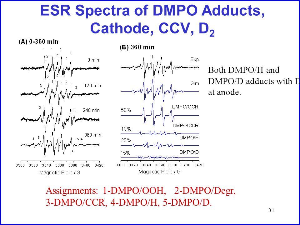31 ESR Spectra of DMPO Adducts, Cathode, CCV, D 2 Assignments: 1-DMPO/OOH, 2-DMPO/Degr, 3-DMPO/CCR, 4-DMPO/H, 5-DMPO/D.