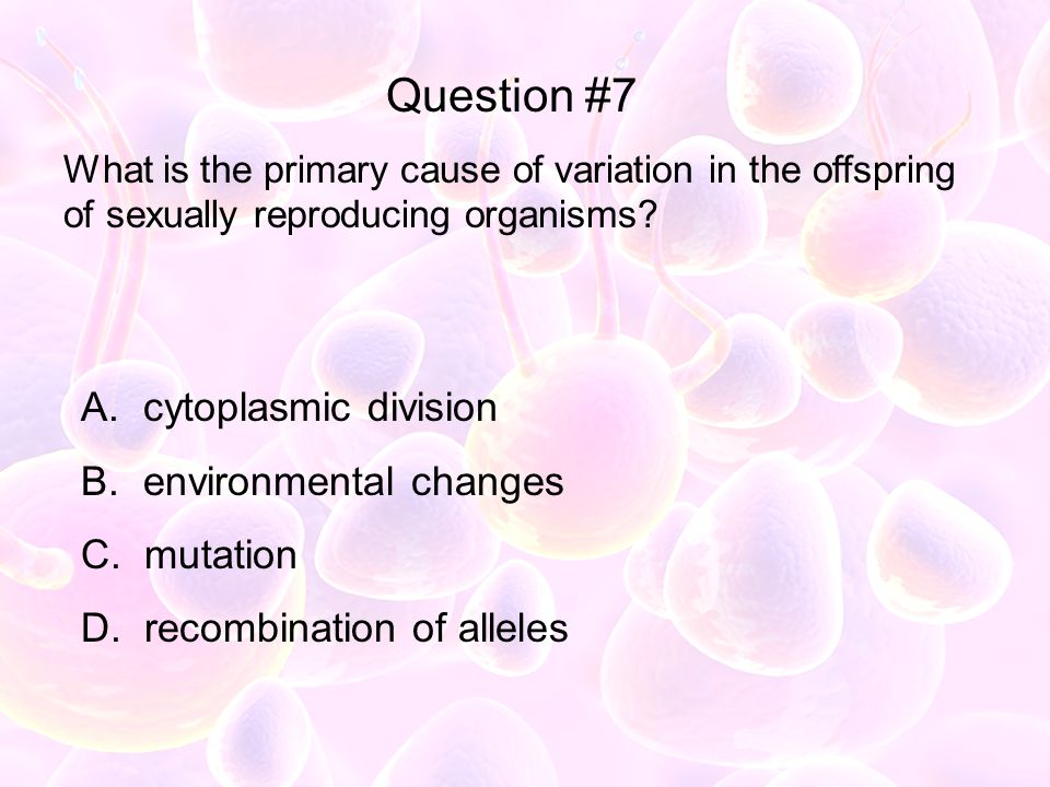 What is the primary cause of variation in the offspring of sexually reproducing organisms? A. cytoplasmic division B. environmental changes C. mutatio