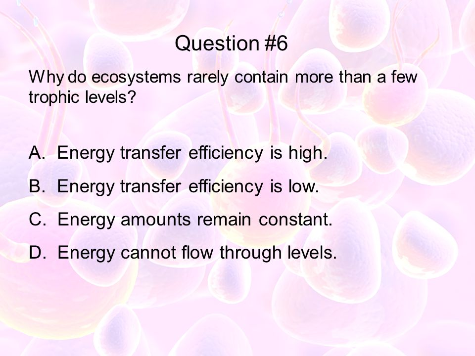 Why do ecosystems rarely contain more than a few trophic levels? A. Energy transfer efficiency is high. B. Energy transfer efficiency is low. C. Energ