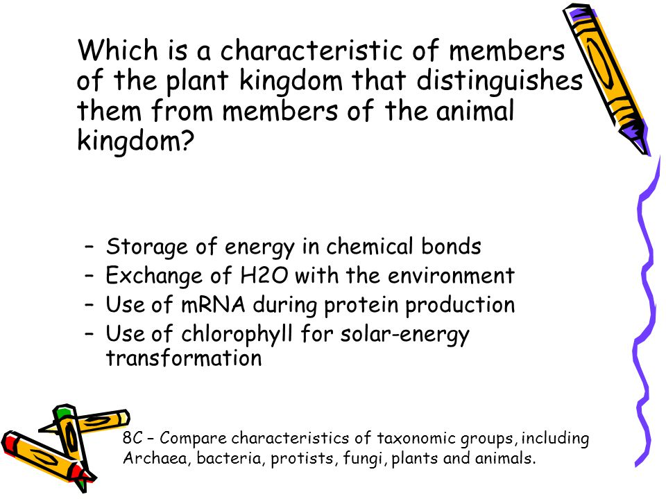 Which is a characteristic of members of the plant kingdom that distinguishes them from members of the animal kingdom? –Storage of energy in chemical b
