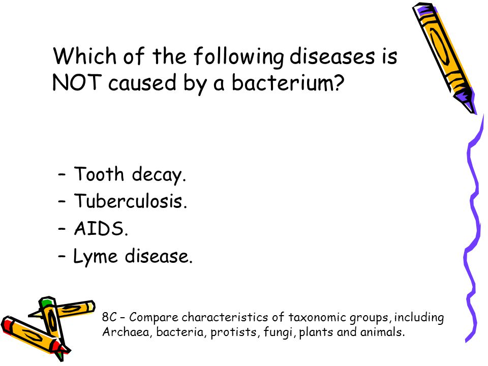 Which of the following diseases is NOT caused by a bacterium? –Tooth decay. –Tuberculosis. –AIDS. –Lyme disease. 8C – Compare characteristics of taxon